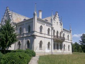 Palatul_de_la_Ruginoasa1