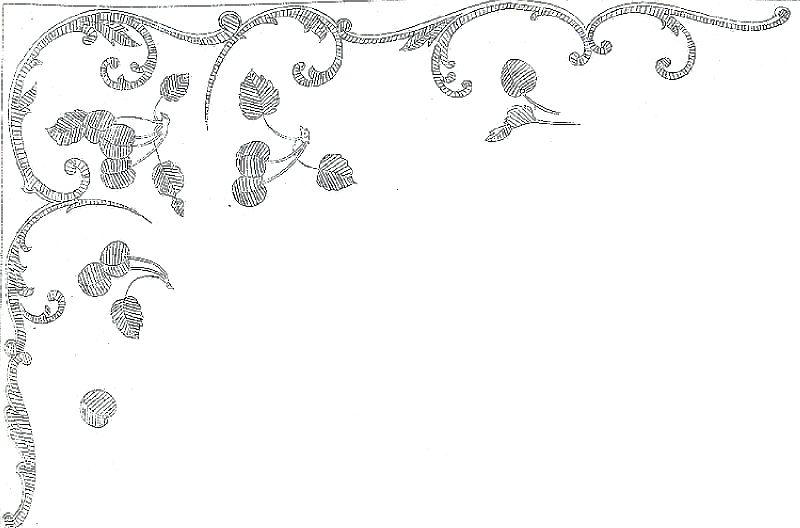Image17 (2)