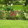 Massif de fleurs du Jardin des Plantes