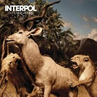 interpol 3