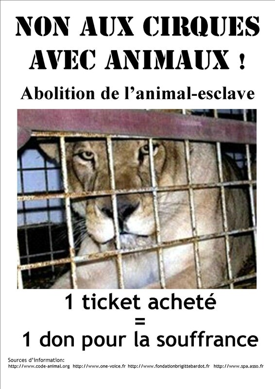 PUBLISHER_Cirque_lionne_1_ticket