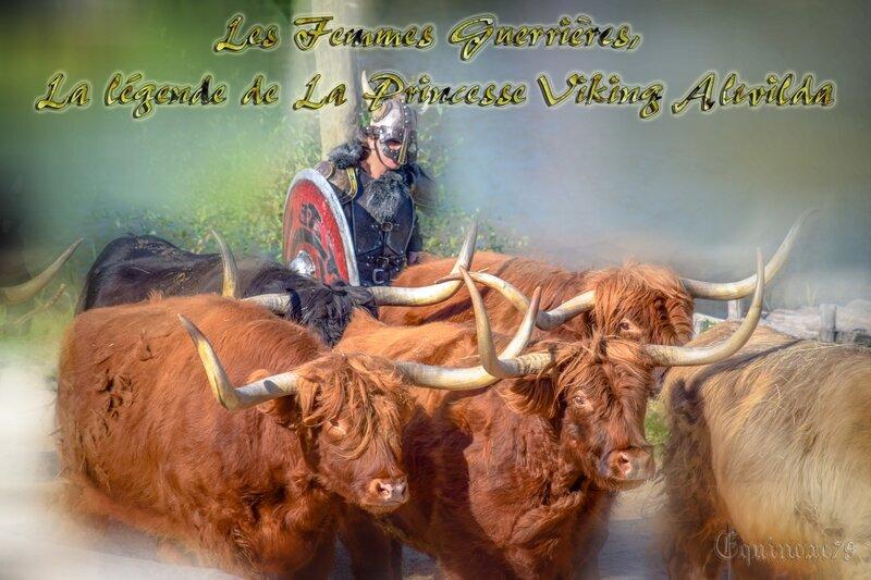 Les Femmes Guerrières, La légende de La princesse viking Alwilda