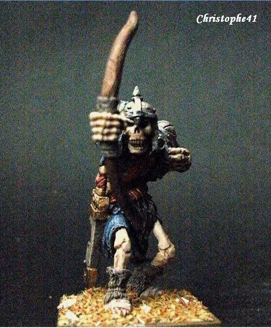 Guerrier squelette PICT9726