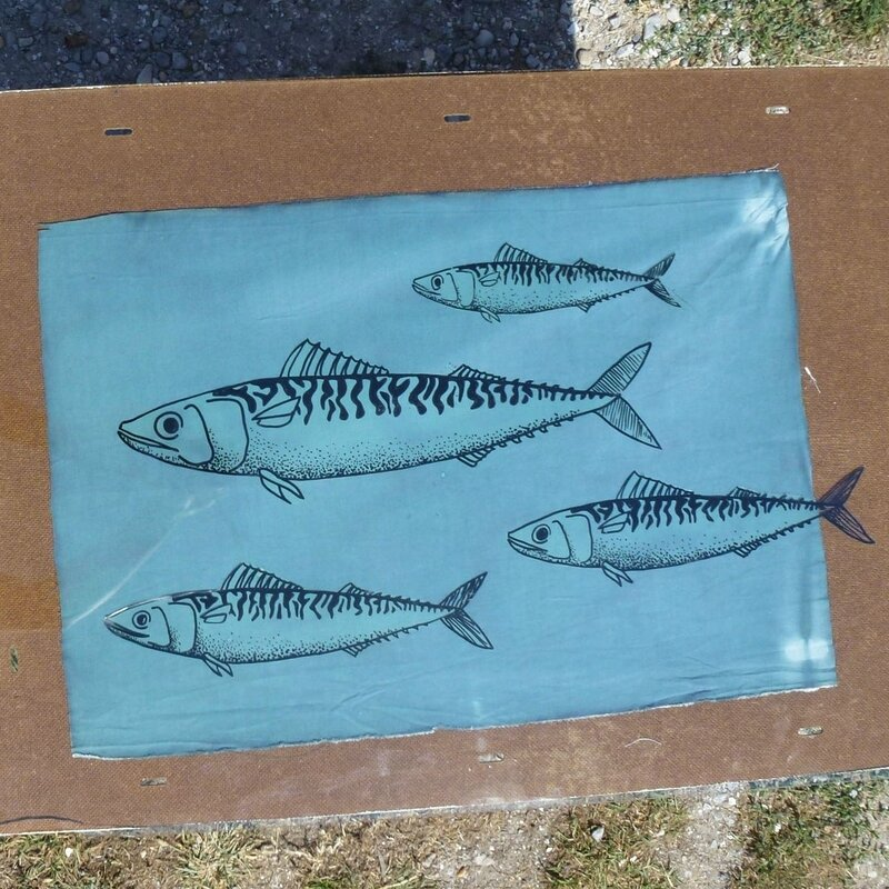 cyanotype poisson 1