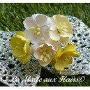 fleurs de cerisier mix jaune