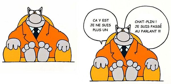 Topic des chats - Page 34 85564568_p