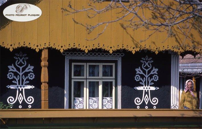 ROUMANIE_Bucovine_BRAIESTI_maisons_noiretblanc_detail