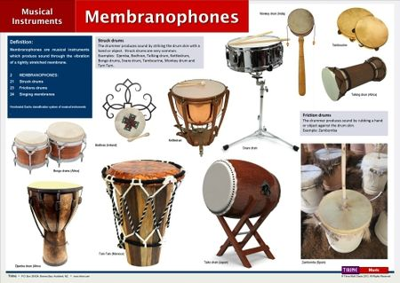 Percussion Famille Membranophones