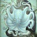 sundsten_octopus[1]