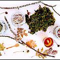 chic des plantes bouillons 1