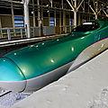Hokkaidô Shinkansen H5 'Hayabusa', Shin-Hakodate-Hokuto station.