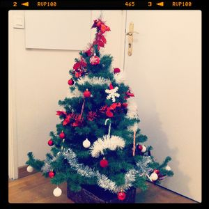 My_Christmas_Tree_2011__2_
