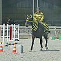 Jeux équestres manchots 2013 (218)