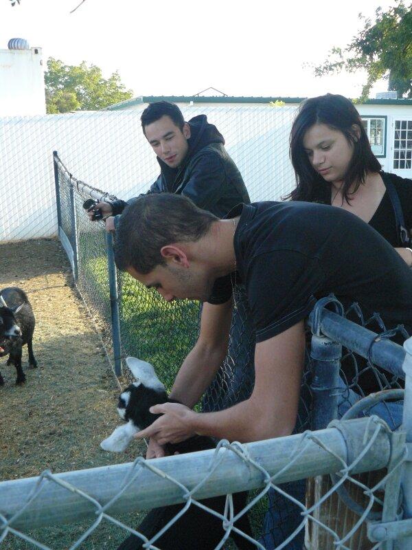 Jeremy (qui caline la biquette), Mickael, Sabrina