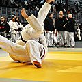 Masters international de judo de tours - 2013