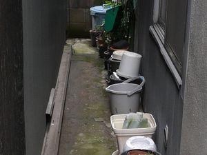 Canalblog_Rues_Plantes08_Tsukishima_D_tail01