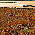 P1030951 - Dilos, vue sur Rinia -