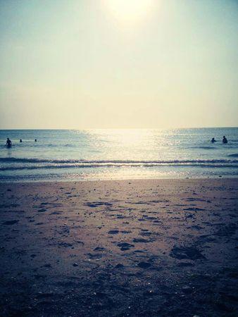 hauteville-sur-mer-mary-du-pole-nord-owly-mary-vacances-marche-travail-la-manche-basse-normandie