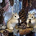 Les petits écureuils