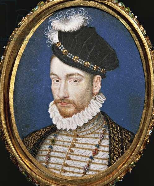 Charles IX, Kunsthistorisches museum