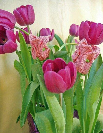 tuliptoesBEAUTY