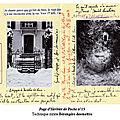 Page d'herbier de poche n°15