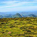 Les monts d'Arette depuis le plateau du Soulaing...
