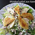 Waldorf salad aux harengs