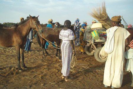 élégante crépusculaire Bac de DJENNÉ Mali