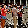 Touristes & pigeons sur la piazza San Marco.
