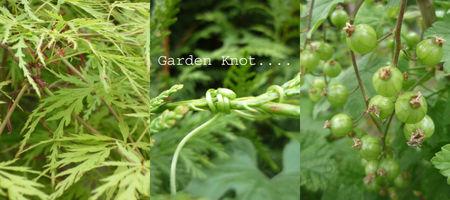 Garden_knot