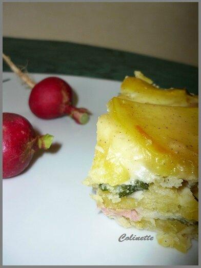 gratin de fanes de radis et pommes de terre 02