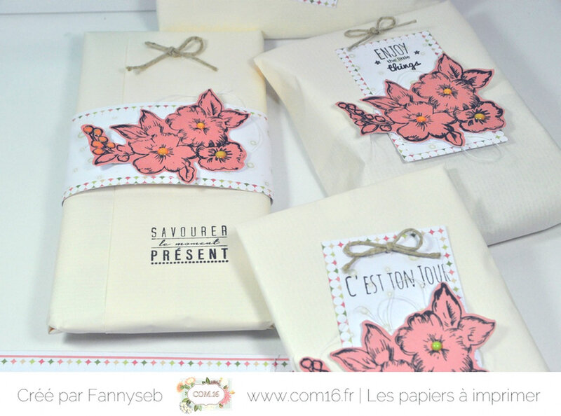 ensemble cadeau fannyseb 4 collection sonia papiers COM16