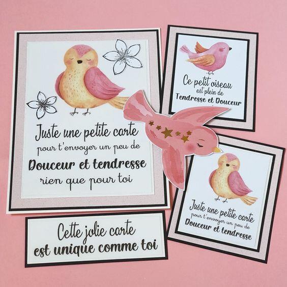 cartes oiseau rose