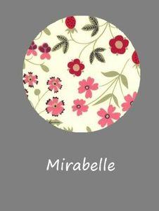 Mirabelle échantillon