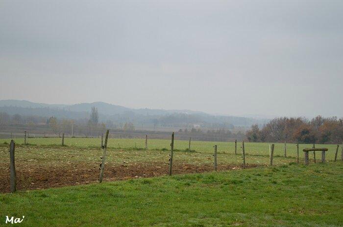 161127_brouillard