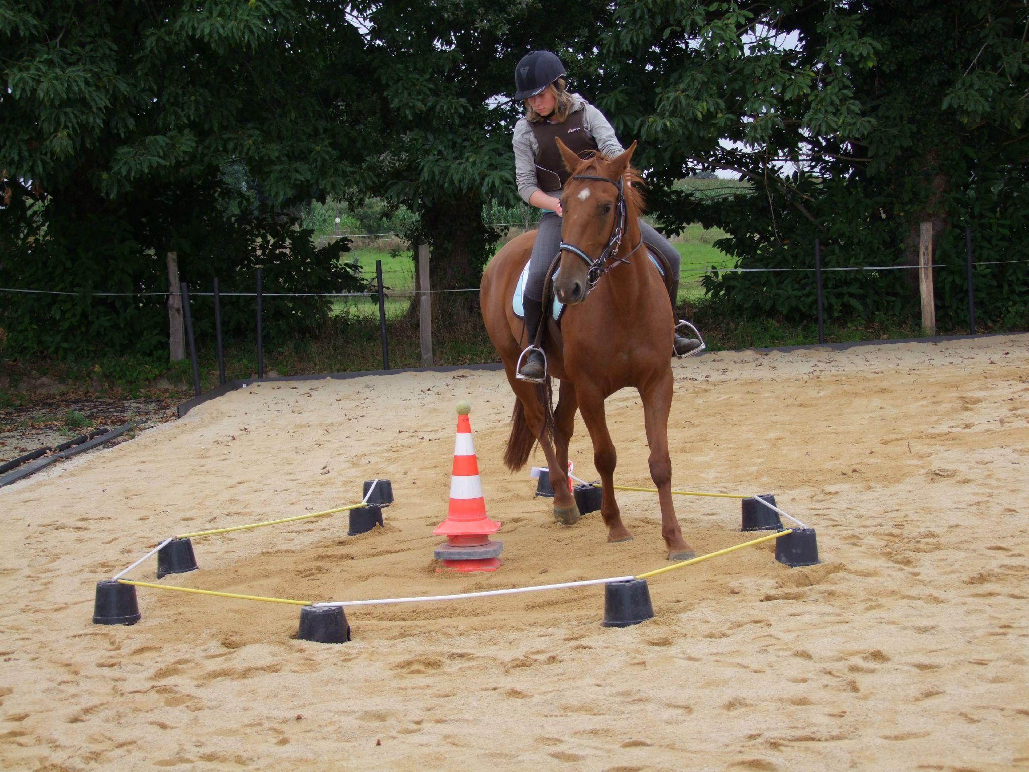 équitation d'extérieur - parcours en terrain varié (204)