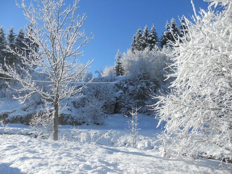 Au pied des tremplins de ski de Chaux Neuve