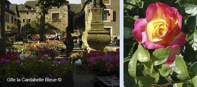Ste-Eulalie-d'Olt, flowery village