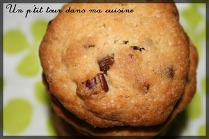 Cookies__rable_p_can_choco_lait3