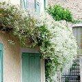 La maison au volets vert
