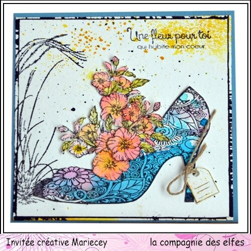 maricey carte chaussure
