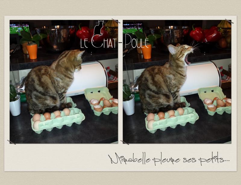 Mirabelle - Bêtise_