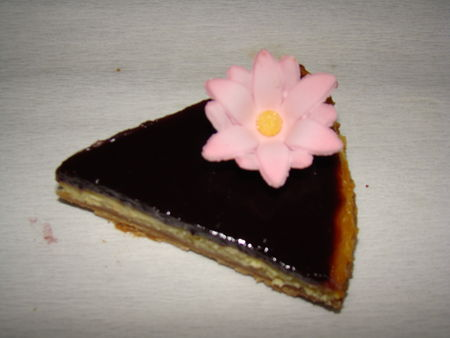 cheesecake_coquelicot_mures_094