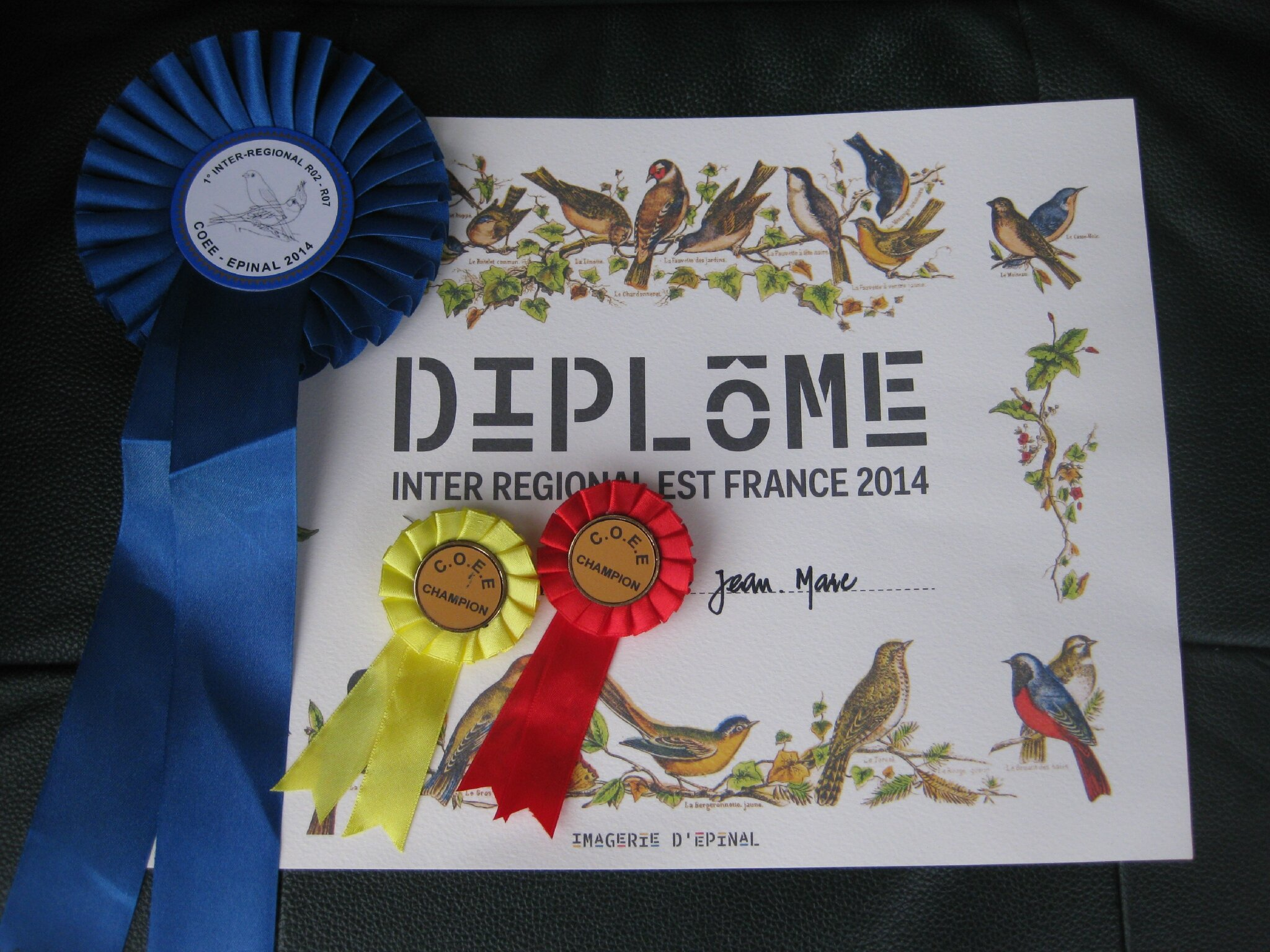 CONCOURS EPINAL DIPLOME 1