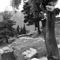 Delphes : site antique
