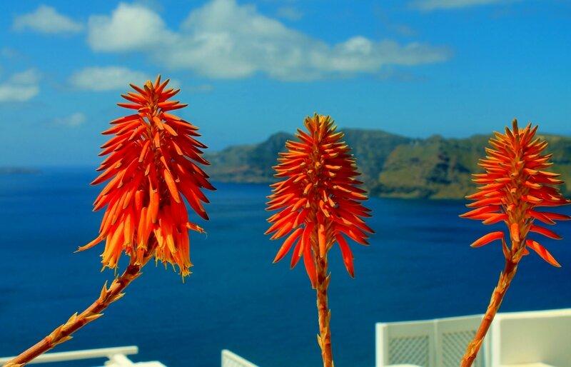 îles Grecques N°2 221