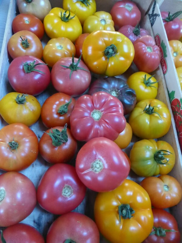5-tomates (8)