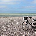 vélo, Cayeux Sur Mer_5342