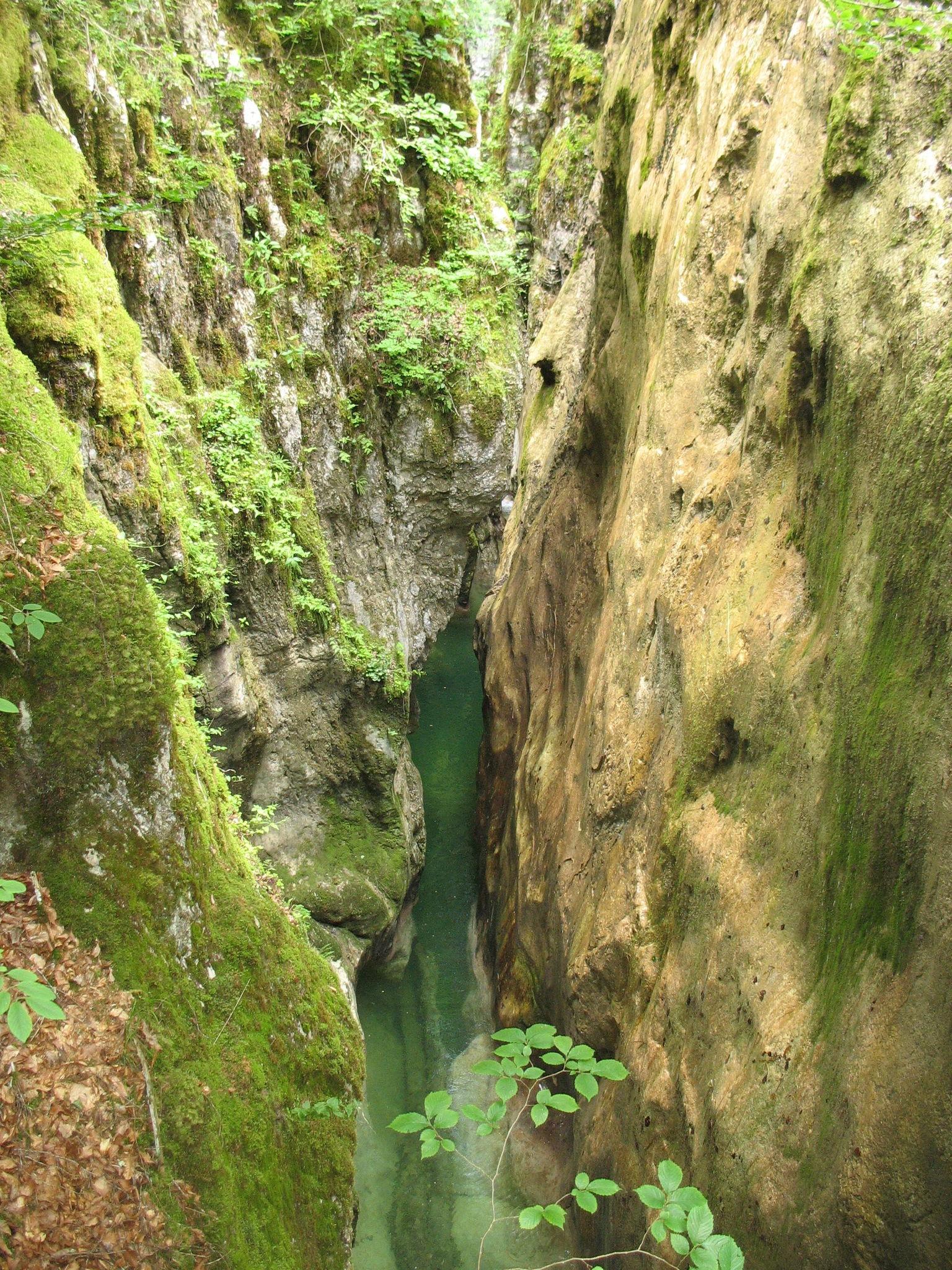 Le canyon du Pont du Diable (74)